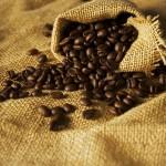 O początkach kawy
