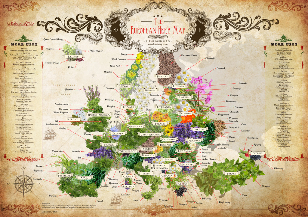 mapa upraw herbat ziołowych