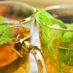 Herbata z kopru włoskiego i jej mniej znane właściwości