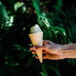 Wegańskie lody: caffe latte i herbaciana eksplozja
