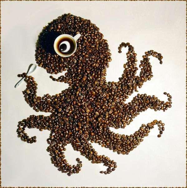 ośmiornica z ziarna kawy
